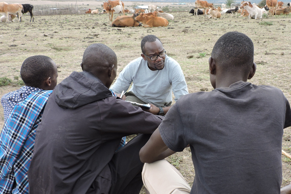 A man sits and speaks with 3 men with cows in the background