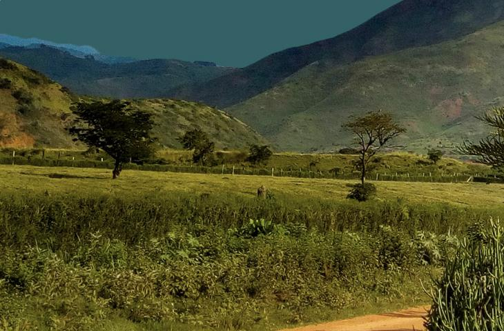 Landscape with trees and mountains in Kasese Uganda